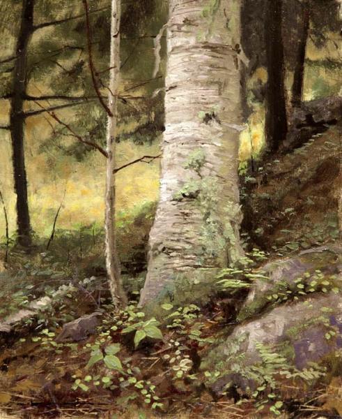 White Mountains, White Birch - Proverbs 19:17, oil on linen, 8 x 10 inches  SOLD