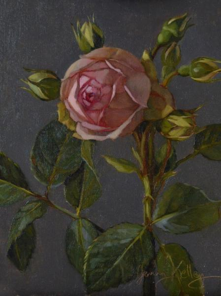 London Rose with Buds, oil on linen, 8 x 6 inches, $700