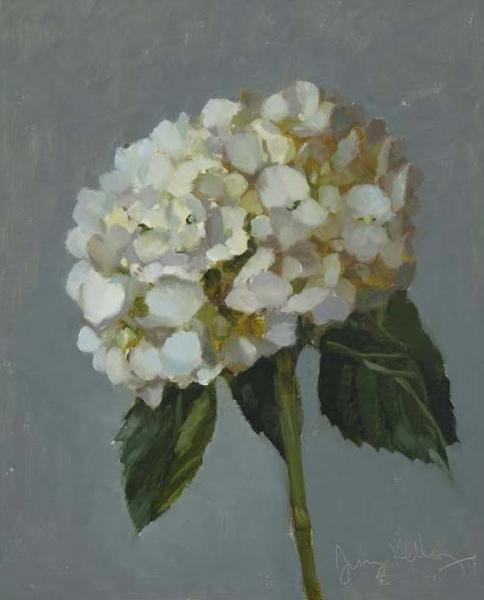 White Hydrangea, Artist Demo. 2/10/18, oil on linen, 10 x 8 inches, $800