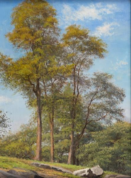 Tree's, oil on canvas, 16 x 12 inches, $2,000