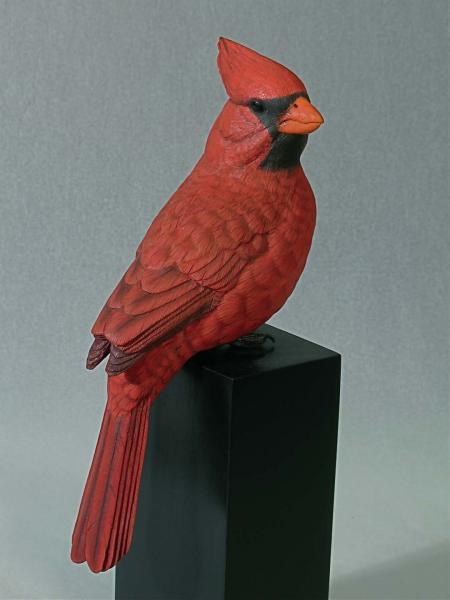 Cardinal, Life Size, carved tupelo with oils,   SOLD
