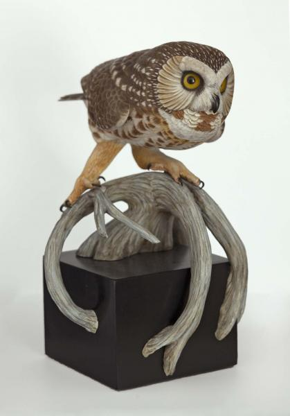 Followed by a Moon Shadow, Saw Whet Owl, carved tupelo with oils, , $3,000