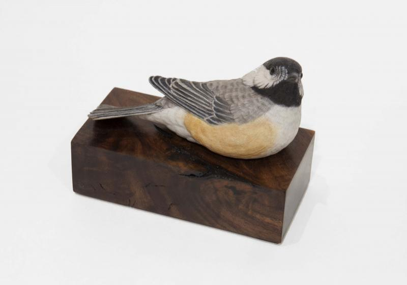 Spring Break, Lifesize Chickadee, carved tupelo with oils,   SOLD