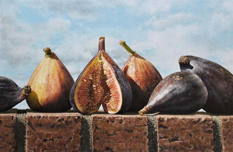 Figs and Sky, oil on canvas, 20 x 30 inches, $3,900