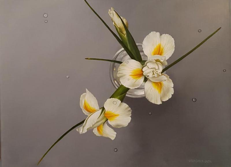 White Iris, oil on canvas, 18 x 24 inches, $3,200