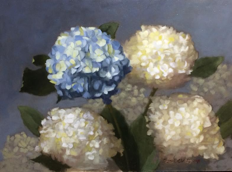 Blue Hydrangea, oil on panel, 12 x 16 inches, $2,800