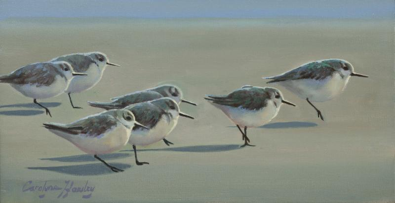 Shore Birds, oil on canvas, 8 x 16 inches, $1,900