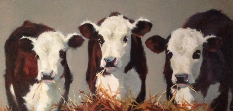 Black Eyes Daisies, oil on canvas, 10 x 20 inches  SOLD