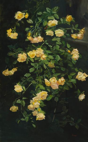 Cascading Yellow Roses, oil on canvas, 48 x 30 inches , $6,000