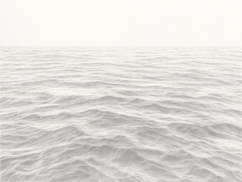 Coherencies, graphite on paper, 36 x 48 inches, $10,700