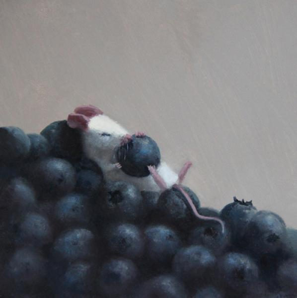 Blueberry Snooze, oil on panel, 5 x 5 inches  SOLD