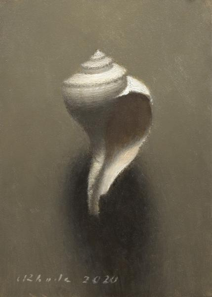 Channeled Whelk, oil on linen, 7 x 5 inches, $900