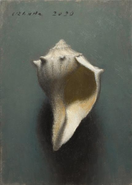 Knobbed Whelk (Juvenile), oil on linen, 7 x 5 inches, $900