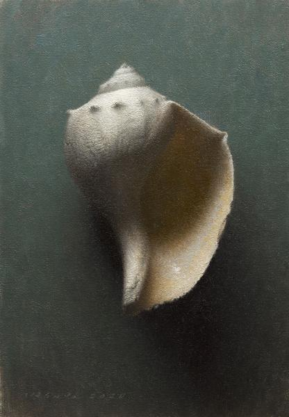 Knobbed Whelk (Mature), oil on linen, 13 x 9 inches, $3,900